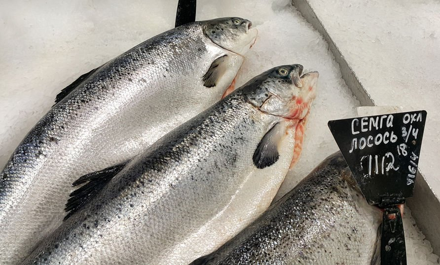 salmon 101 buying fishing cooking guide